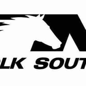 Norfolk Southern Corp veiklos tyrimas, rekomendacijos, prognozės